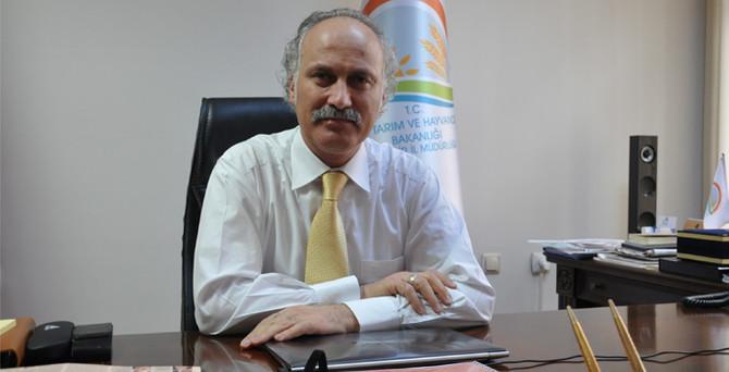 Eskişehir'de aspir üretimine talep arttı