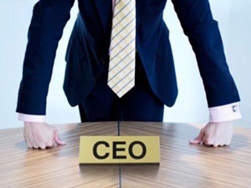 Genç liderler CEO'larla buluşuyor