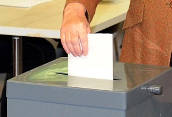 Litvanya'da devlet başkanlığı seçimi