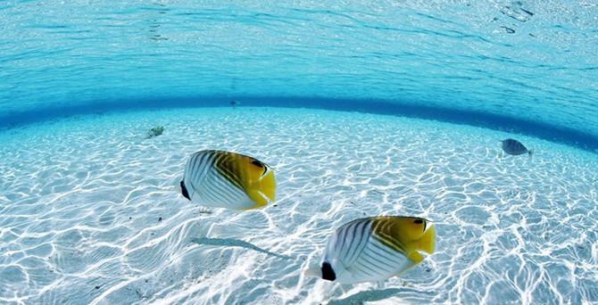 Dünyanın altında okyanuslar kadar su var