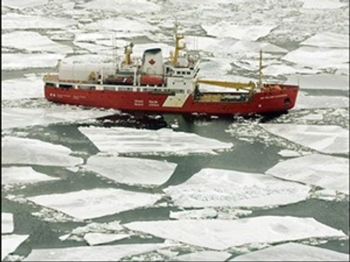 Kanadalı balıkçılara dava