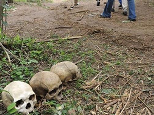 Nijerya'da 'dehşet ormanı'ortaya çıkarıldı