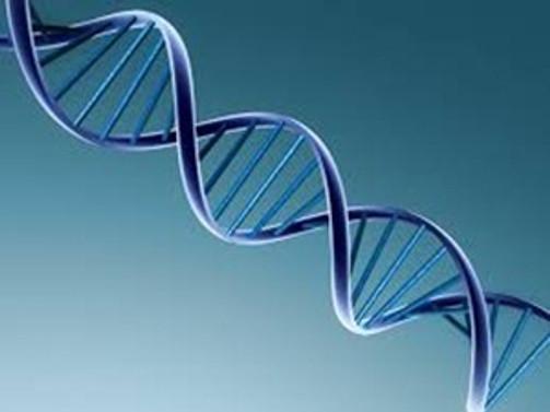 """Türkiye'nin """"ilk"""" genetik test analizleri yapılacak"""