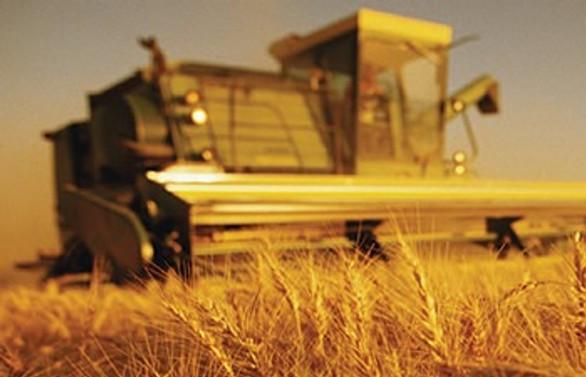 Tarım ÜFE yüzde 0.73 azaldı