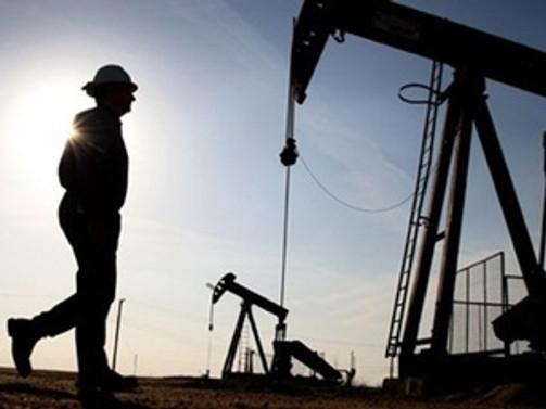 Çalık, petrol arama ruhsatı için müracaat etti