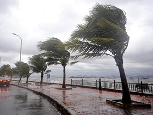 Orta ve Güney Ege'de fırtına uyarısı
