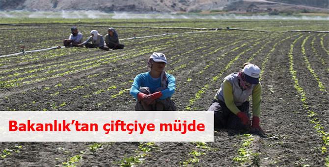 Bakanlık'tan çiftçiye müjde