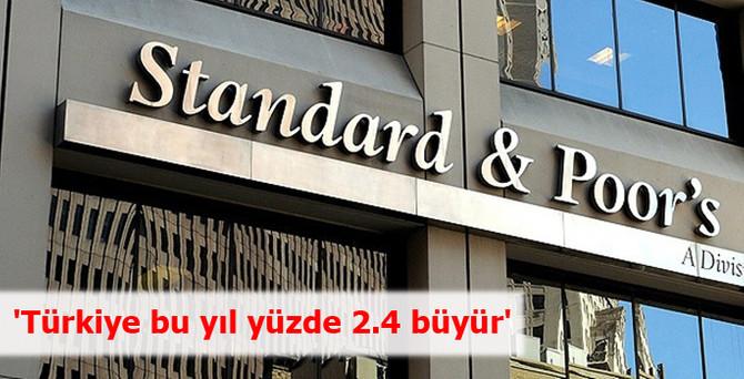 'Türkiye bu yıl yüzde 2.4 büyür'