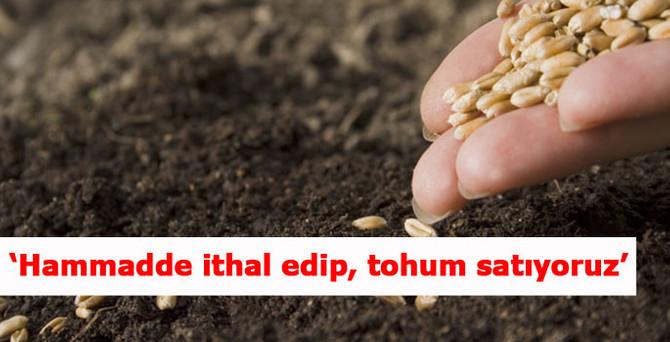 'Hammadde ithal edip, tohum satıyoruz'