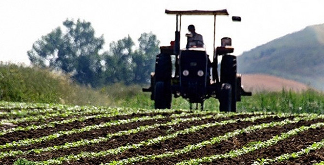 Türkiye 197 ülkeye tarım ürünü ihraç ediyor