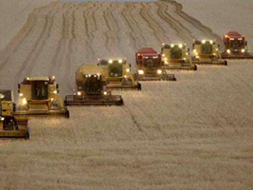 Konya Ovası'nda organik tarım yaygınlaşıyor