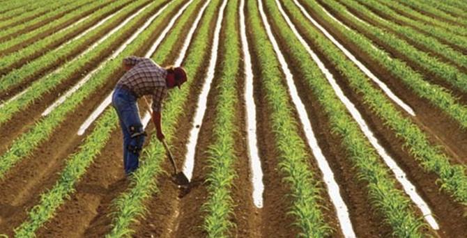 Af Paketi'nde çiftçi yok