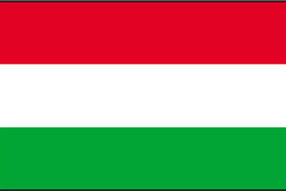 Macaristan'daki seçimleri Fidesz kazandı