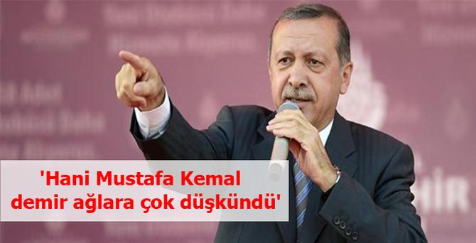 Erdoğan: 'Hani Mustafa Kemal demir ağlara çok düşkündü'