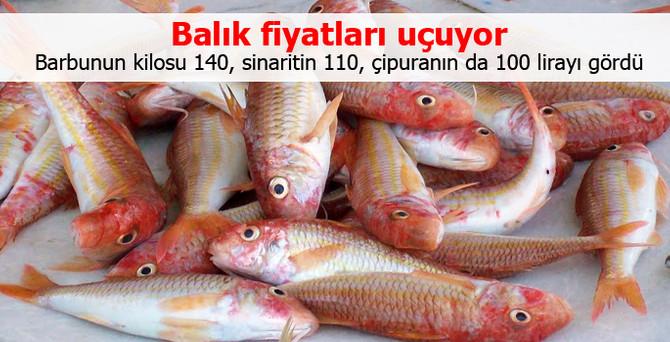 Balık fiyatları uçuyor