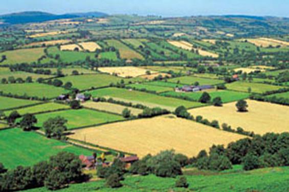 Tarımda Ar-Ge projelerini, Kurul belirleyecek