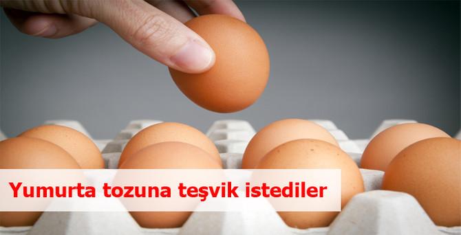 Yumurta tozuna teşvik istediler