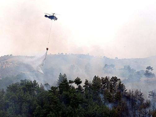Gölbaşı'nda 17 dönümlük ormanlık yandı