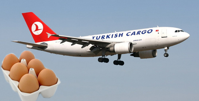 Irak'a yumurta havadan gidecek