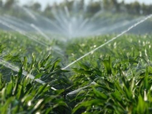 Tarımsal sulamadaki elektrik sorununa GAP çare olacak