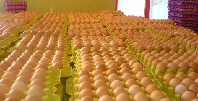 Irak'ın bayram hazırlığı yumurta fiyatlarını artırdı