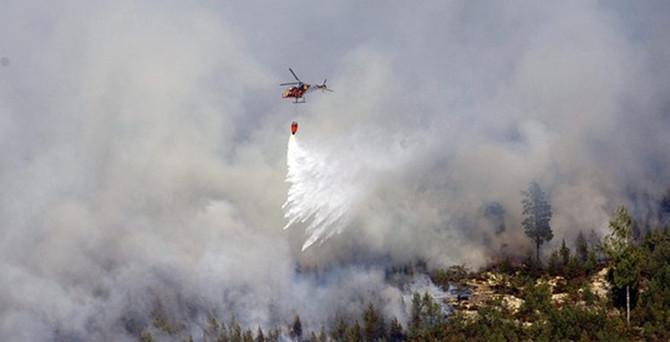 İsveç'te son yılların en büyük orman yangını
