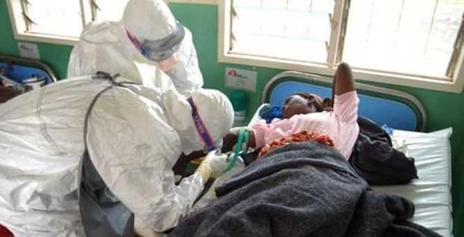 Ebola virüsü için tedavi yöntemi arıyor!