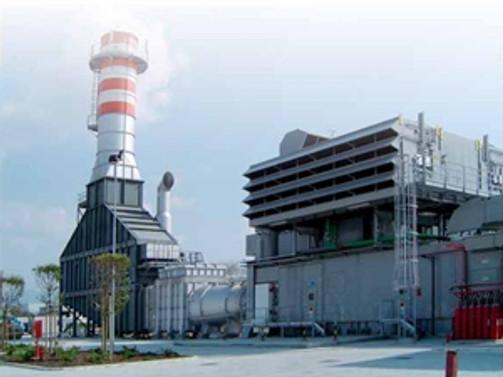 Park Elektrik doğalgaz santrali projelerini durdurdu