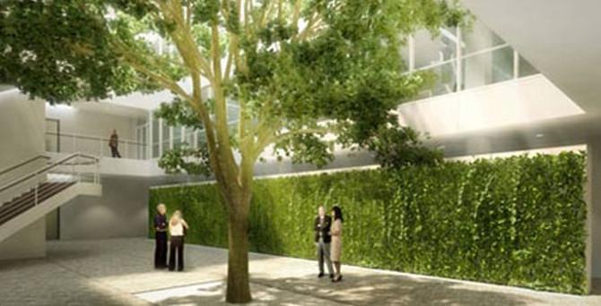 İyileştiren mimari tasarım: Biyofili