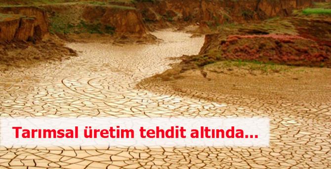 Konya'da tarımsal üretim tehdit altında...