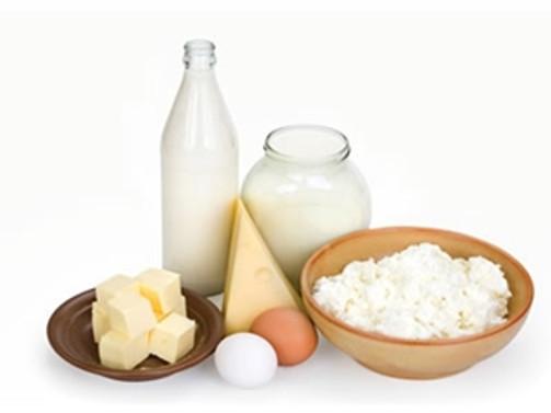 Kırklareli Rusya'ya süt ihracatına hazırlanıyor
