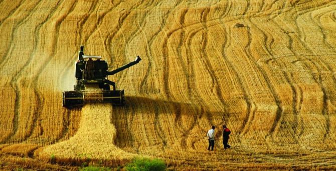 Elektrik borcunu ödemeyen çiftçiye kötü haber