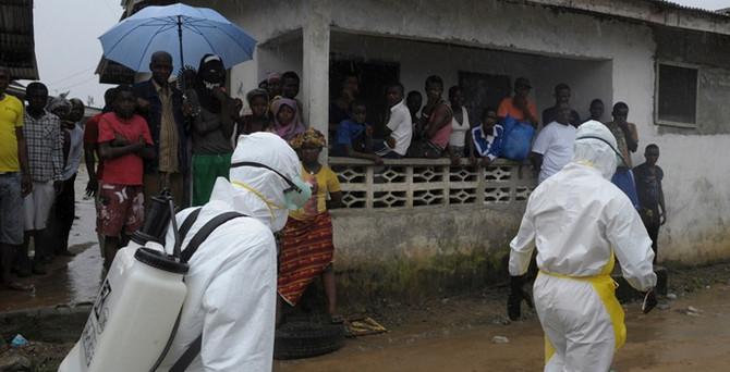 Pamuk ve kakaoya ebola darbesi