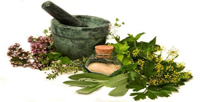 Çiftçi tıbbi bitki ekecek