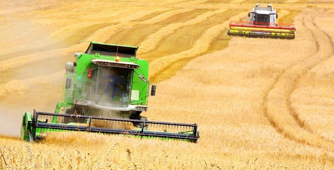 Tarım, 5 yıl daha stratejik önemini koruyacak