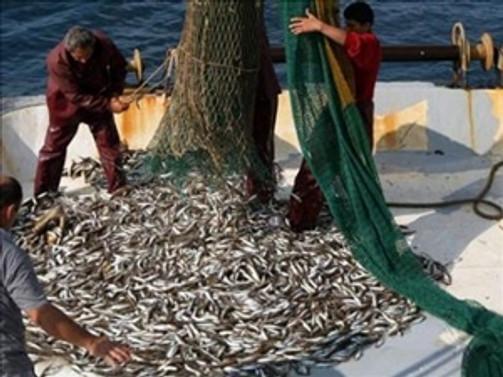 Balıkçılara 26 bin liralık ceza!