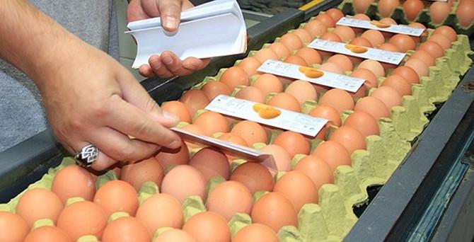 Yumurtaya zam yok