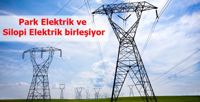 Park Elektrik ve Silopi Elektrik birleşecek