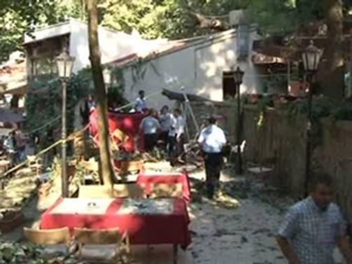 Ağaç faciasında bir kişi daha öldü