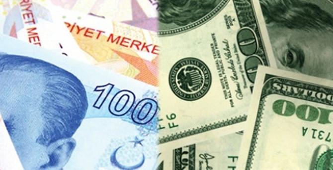 Yatırımın yıldızı TL, kara gün dostu dolar olacak