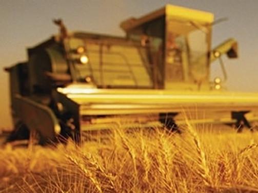 Günde 12 futbol sahası büyüklüğünde tarım alanı yok oluyor