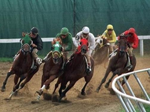 TJK, yarınki Diyarbakır yarışlarını iptal etti