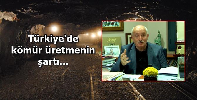 Türkiye'de kömür üretmenin şartı