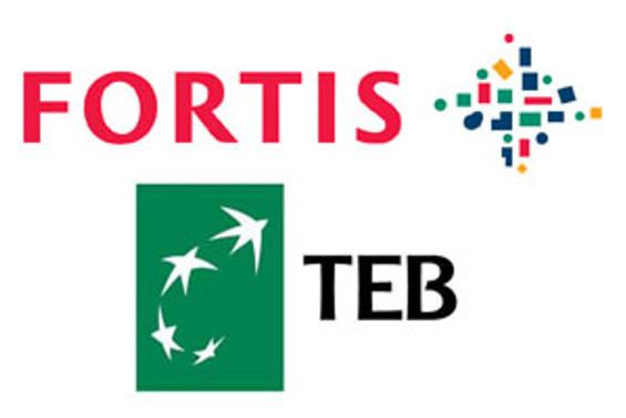 Fortis, TEB birleşmesi için 25 Ocak'ta toplanıyor