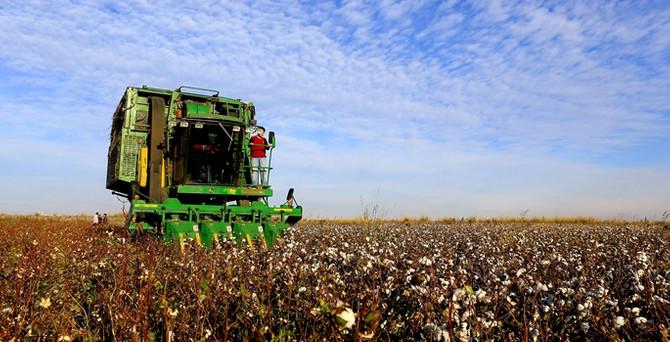 2.4 milyar liralık tarımsal destek ödemeleri başladı