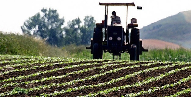 Faaliyetler dibe vurdu ama tarımda istihdam arttı
