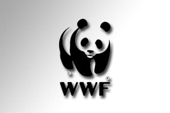 BM'den WWF'ye ceza