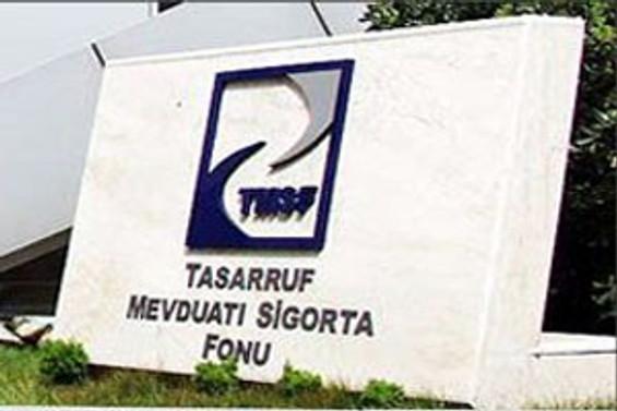 TMSF'den Hazine'ye 433 milyon dolar