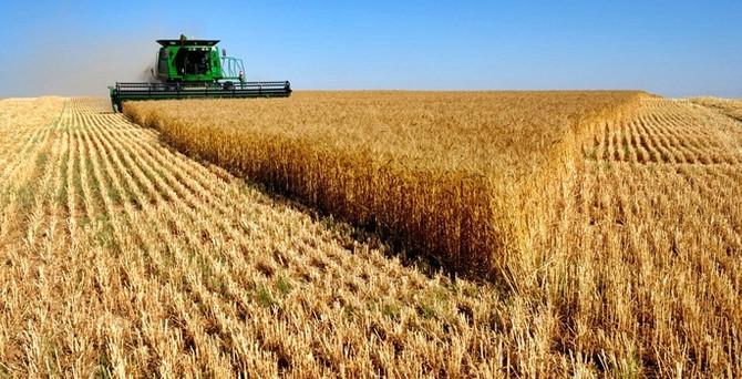 Küresel tarım üretiminde rekor kırıldı