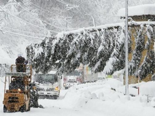 Siirt'te 120 köy yolu ulaşıma açıldı